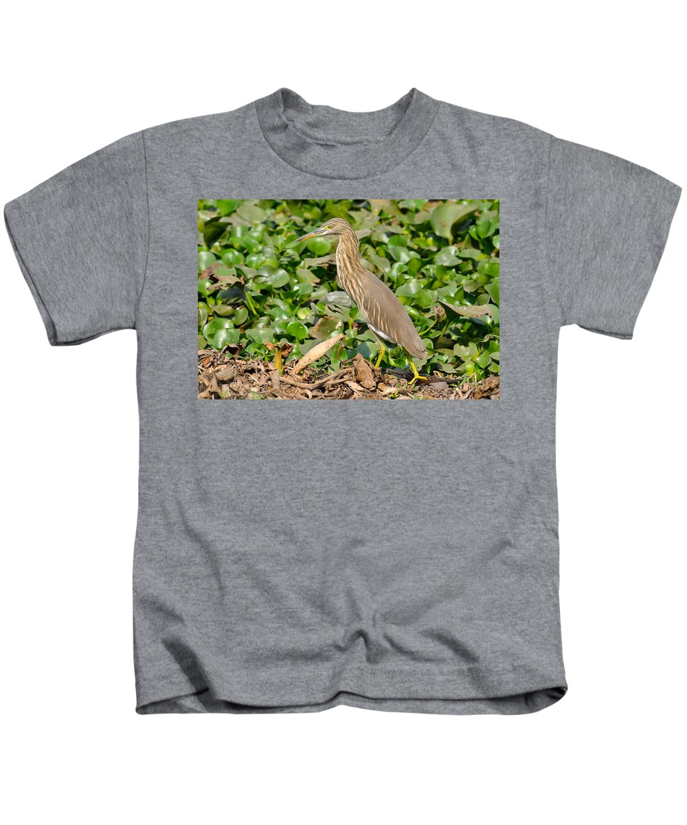 Pond Kids T-Shirt featuring the photograph Pond Heron by Fotosas Photography