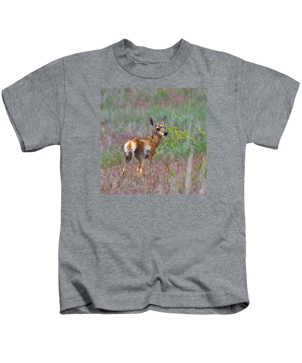 Pronghorn Kids T-Shirt featuring the photograph Pronghorn Fawn by Karon Melillo DeVega
