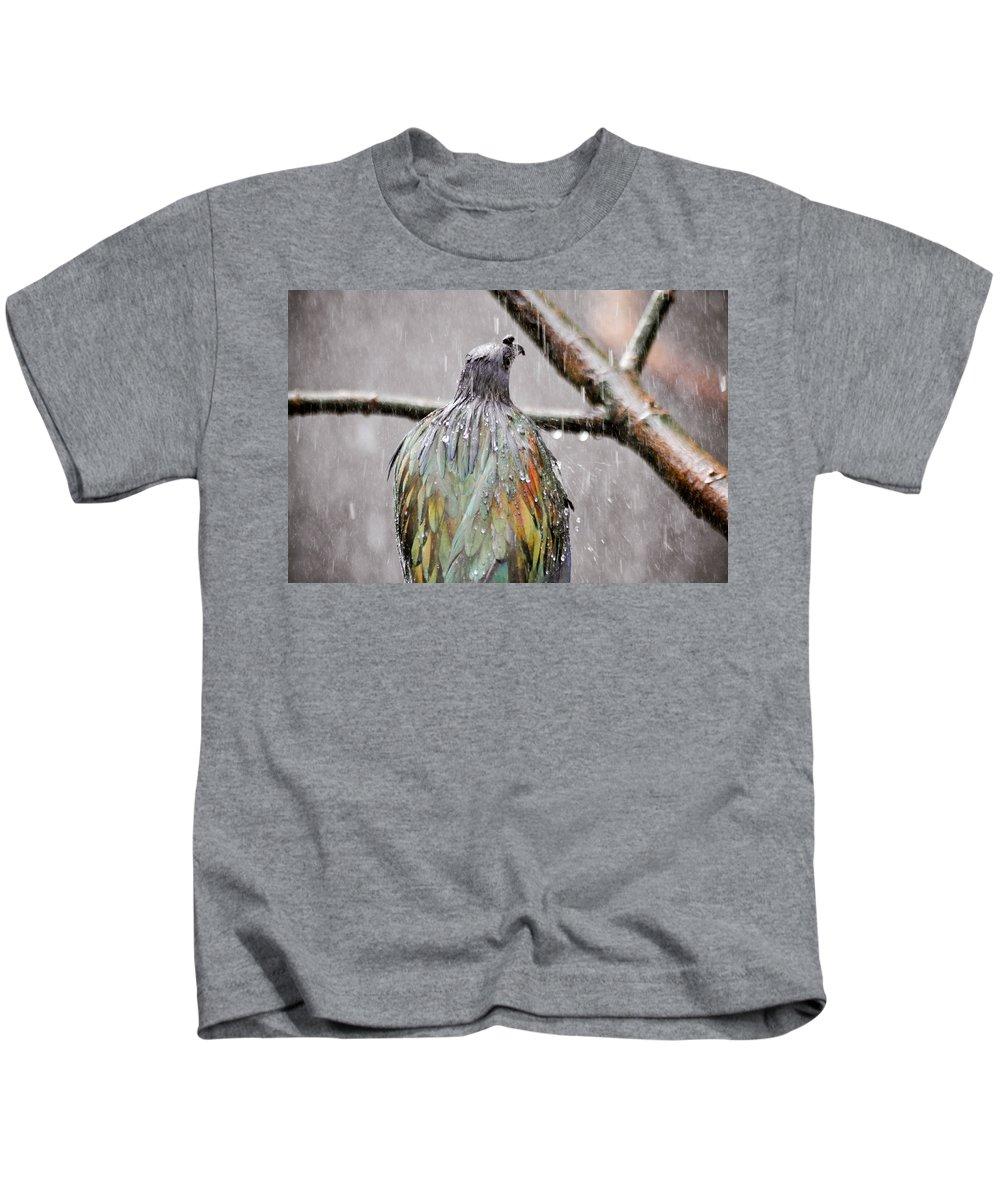 Bird Kids T-Shirt featuring the photograph Rainbow Showers by Trish Tritz