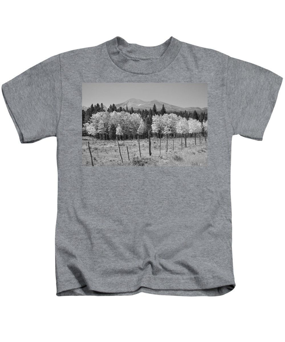 Colorado Kids T-Shirt featuring the photograph Rocky Mountain High Country Autumn Fall Foliage Scenic View Bw by James BO Insogna