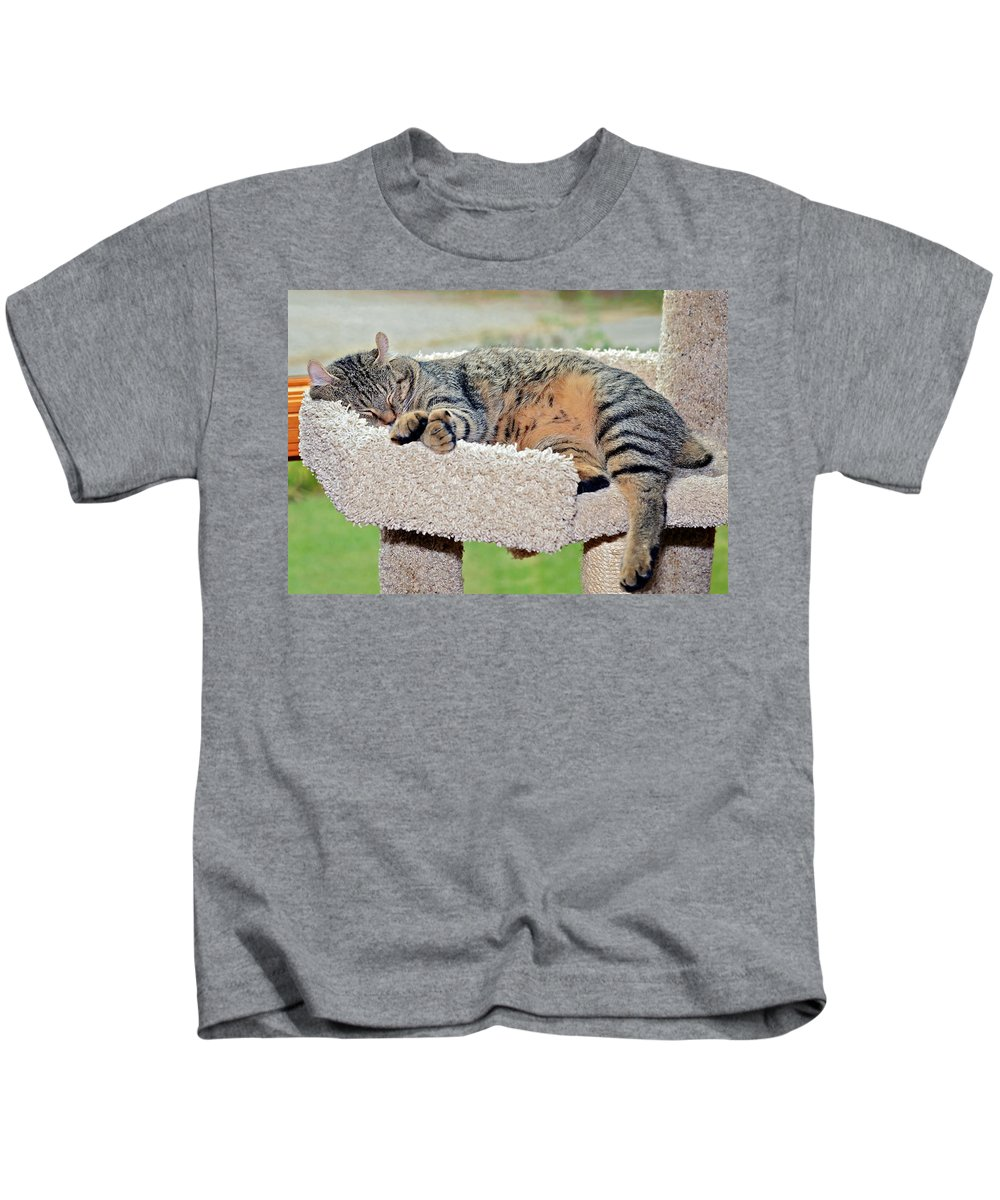 Kitty Kids T-Shirt featuring the photograph Sleeping Cat by Susan Leggett