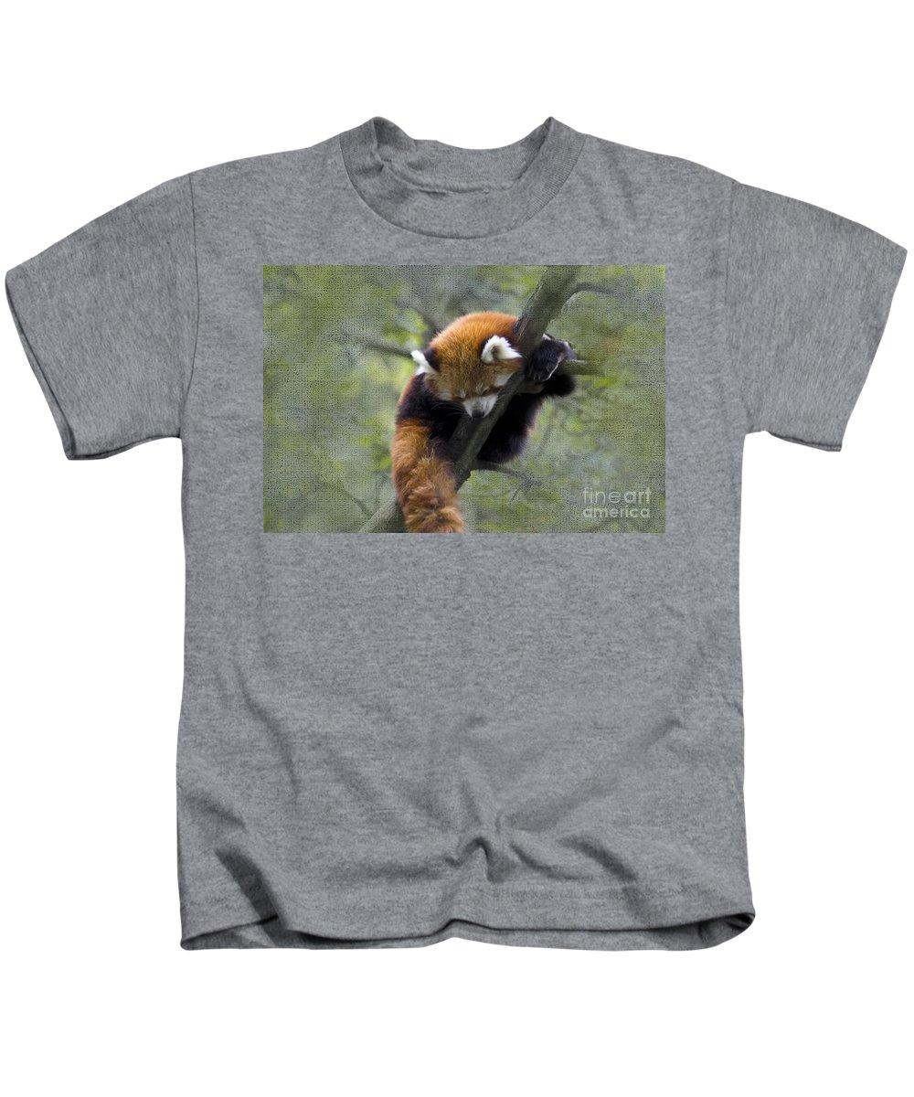 Nature Kids T-Shirt featuring the photograph sleeping Small Panda by Heiko Koehrer-Wagner
