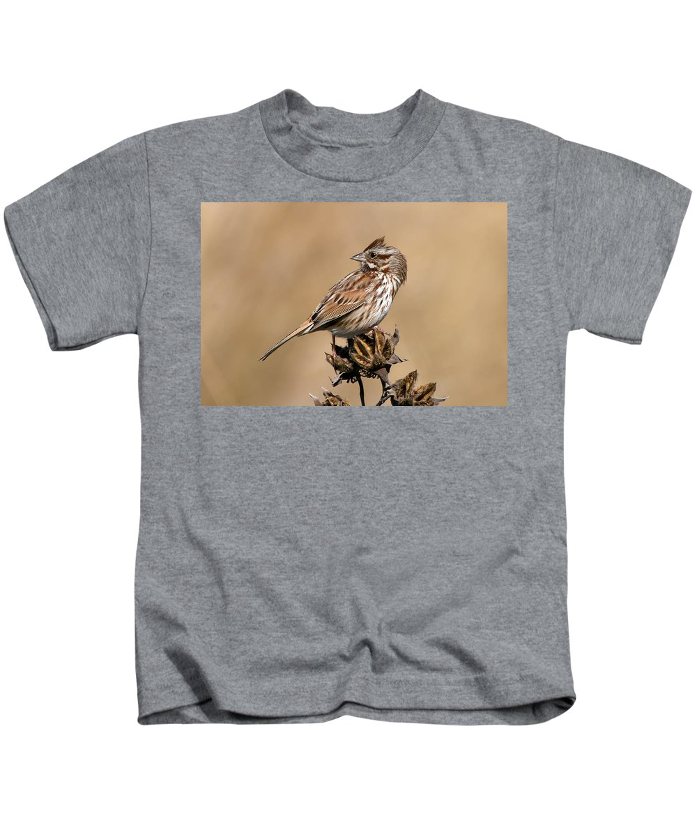 Animal Kids T-Shirt featuring the photograph Song Sparrow by Rich Leighton