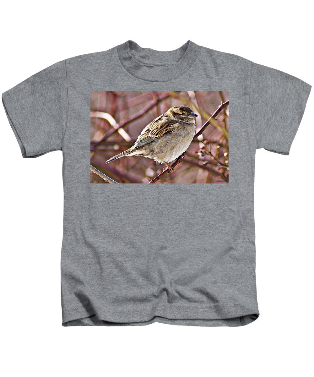 Sparrow Kids T-Shirt featuring the photograph Sparrow II by Joe Faherty