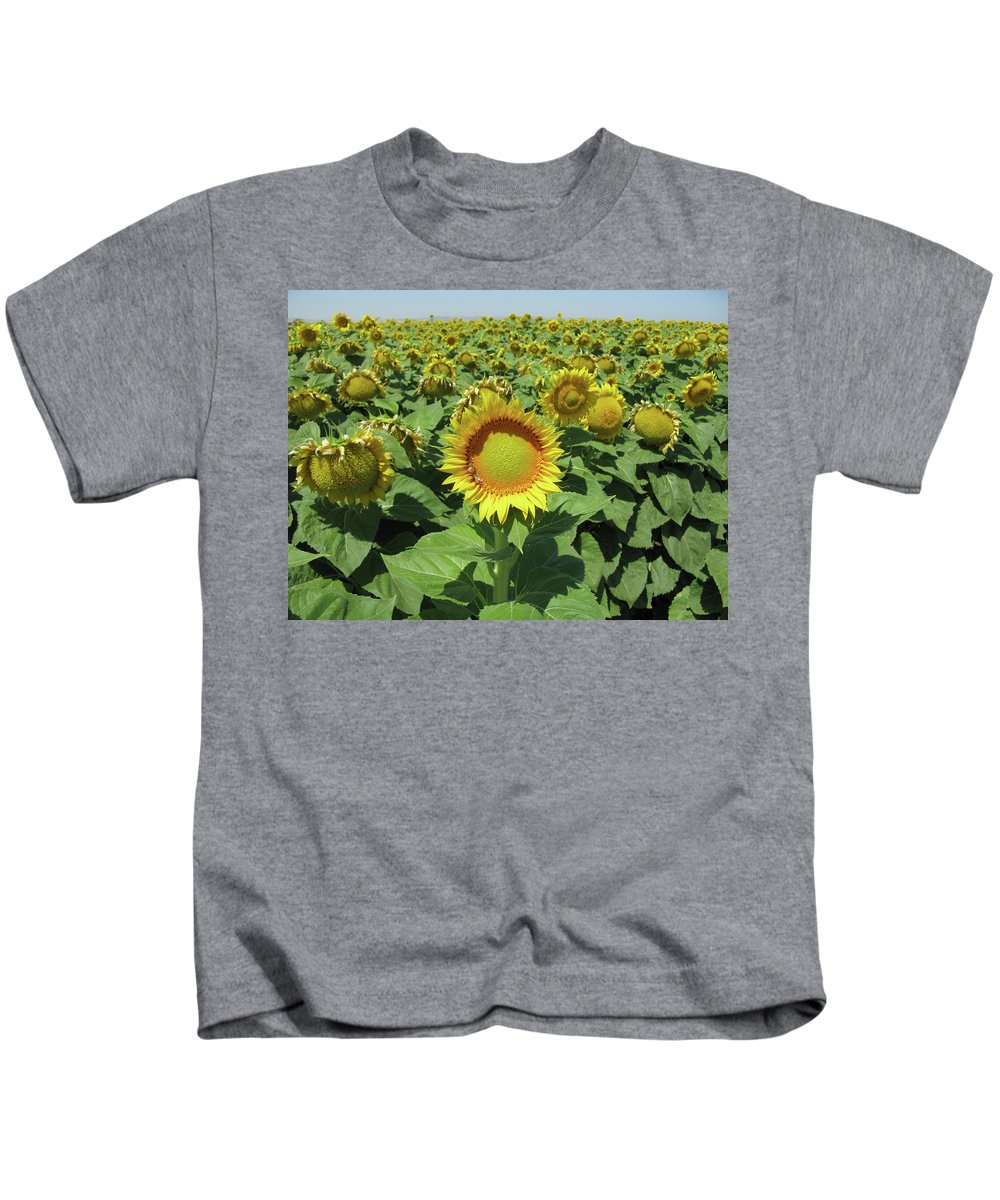 Sunflower Kids T-Shirt featuring the photograph Sunflower And Honeybees July Two K O Nine II by Carl Deaville