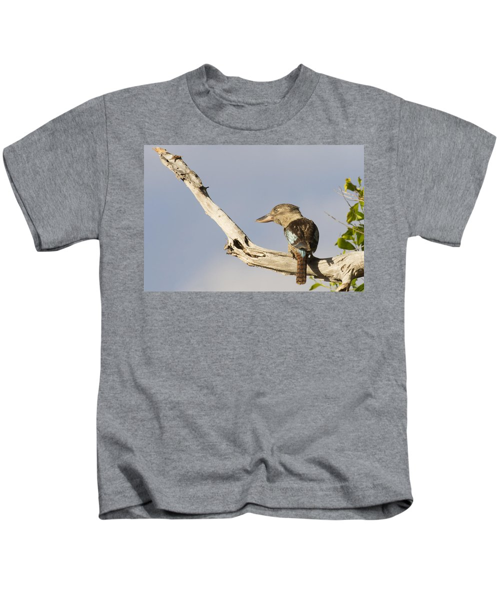Laughing Kookaburra Kids T-Shirt featuring the photograph Tell me a Joke by Douglas Barnard