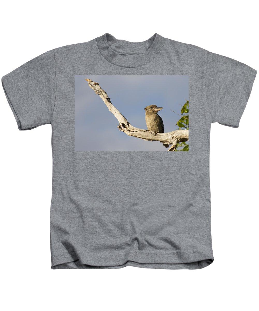 Laughing Kookaburra Kids T-Shirt featuring the photograph Tell Me Another Joke by Douglas Barnard