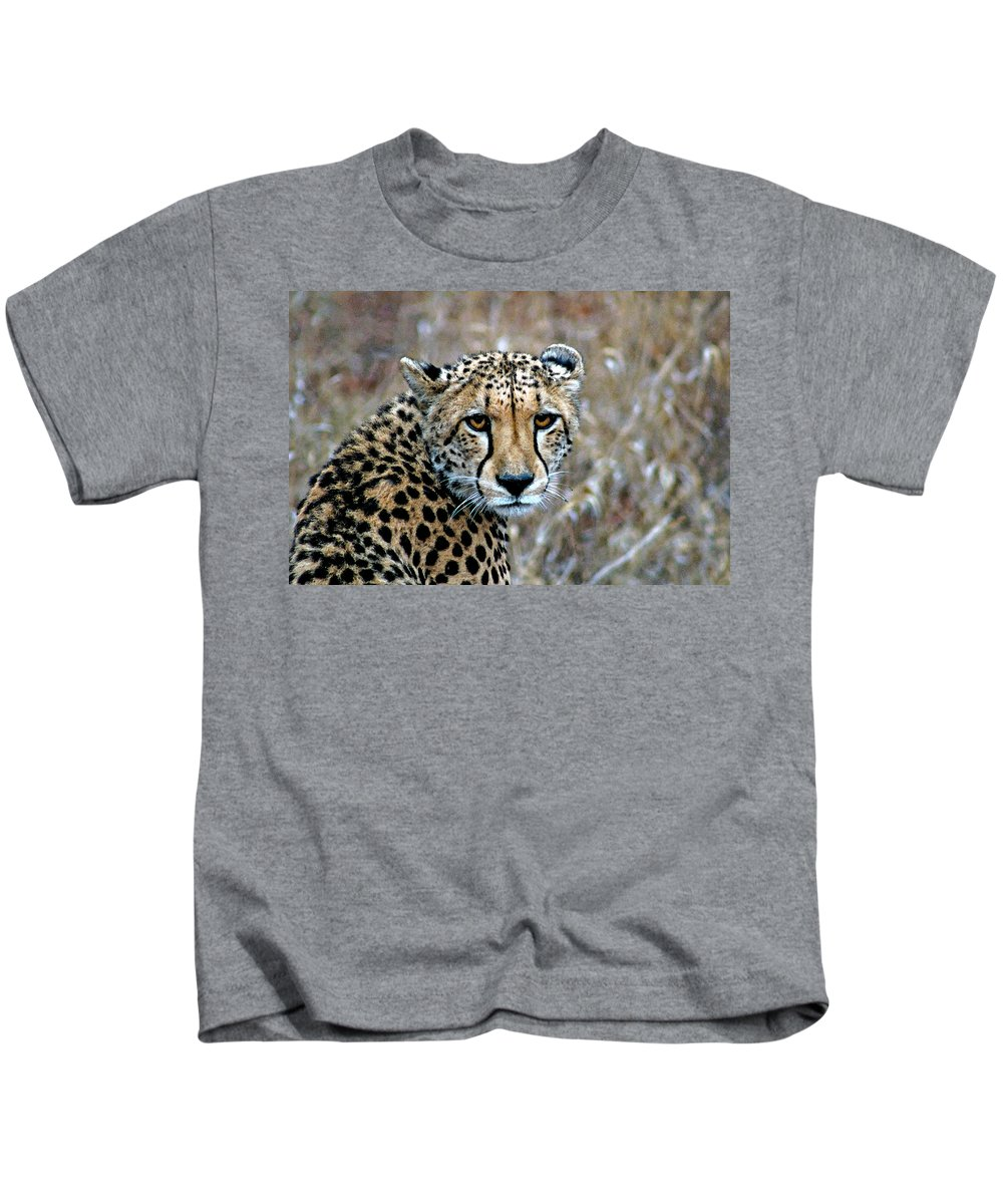 Acinonyx Kids T-Shirt featuring the photograph The Cheetah Stare by Paul Fell