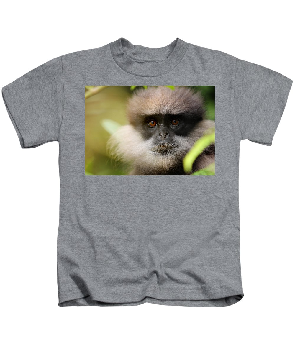 Monkey Kids T-Shirt featuring the photograph The Purple-faced Langur. Nuwara Eliya.sri Lanka by Jenny Rainbow