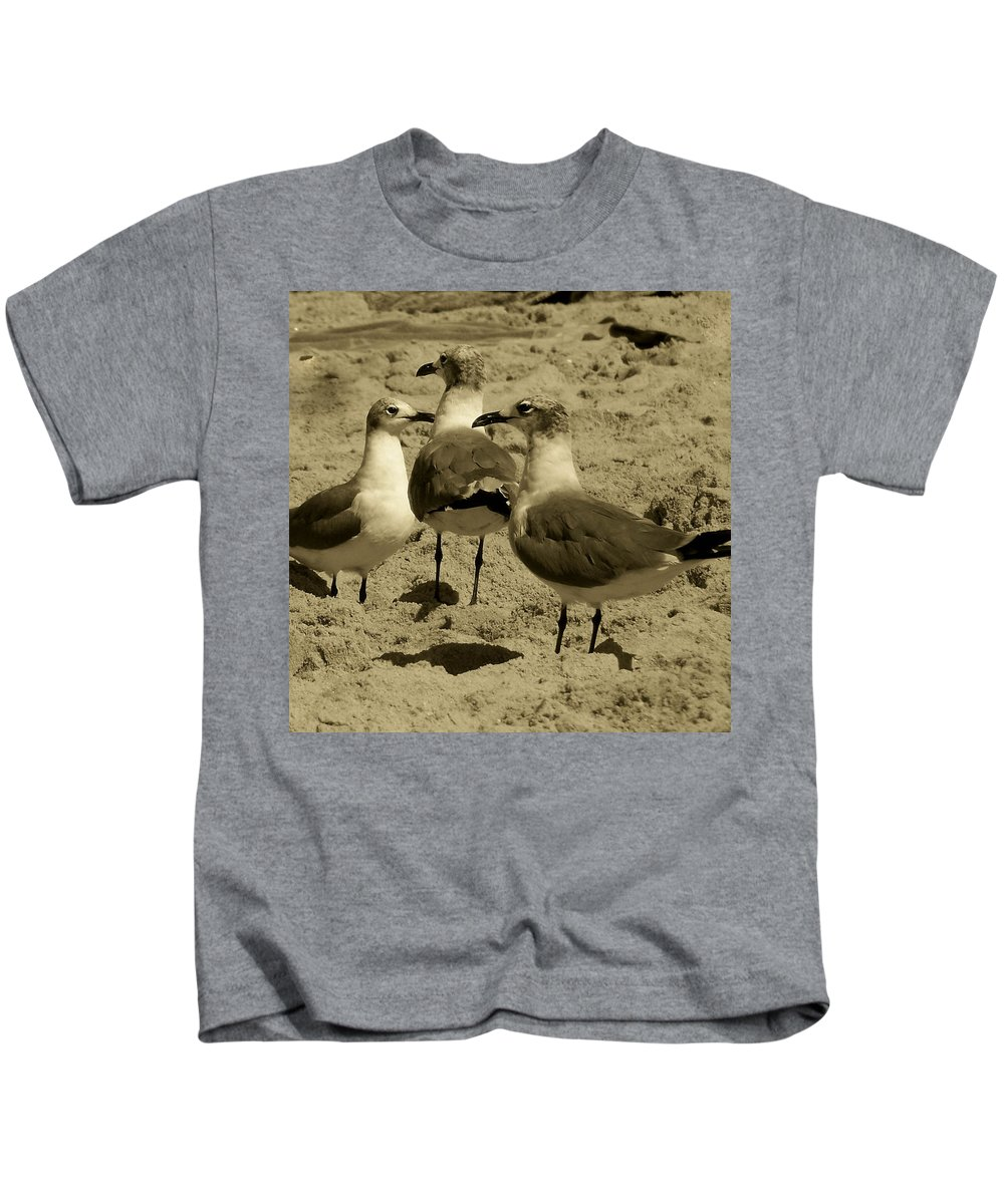 Seagull Kids T-Shirt featuring the photograph The Three Amigos by Trish Tritz