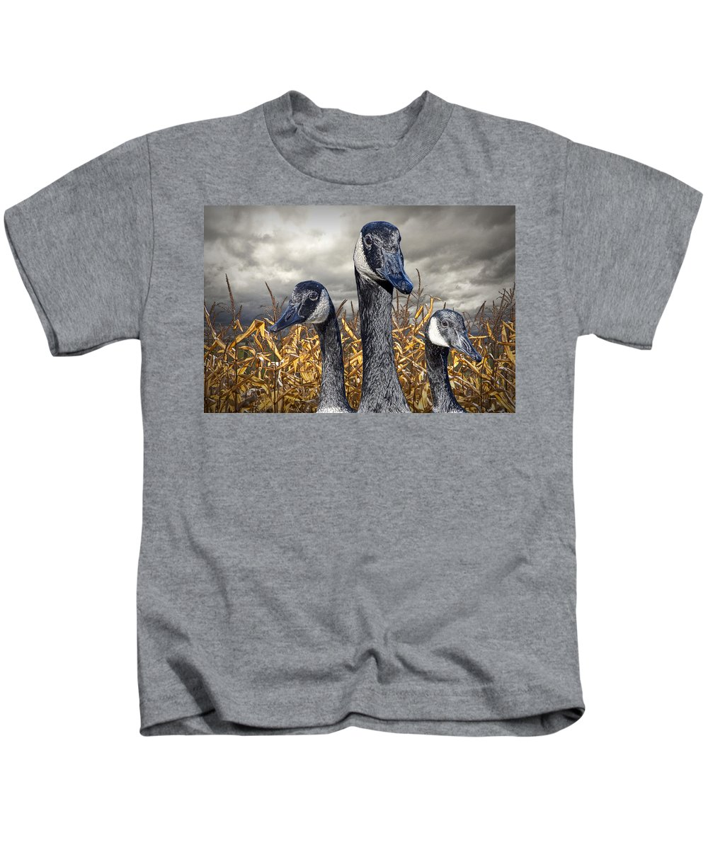 Art Kids T-Shirt featuring the photograph Three Canada Geese In An Autumn Cornfield by Randall Nyhof