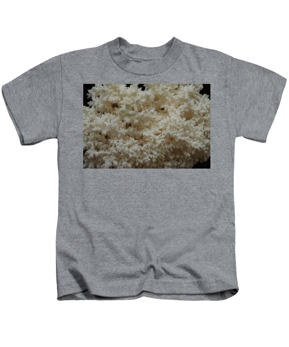 Hericium Coralloides Kids T-Shirt featuring the photograph Tooth Fungus by Daniel Reed