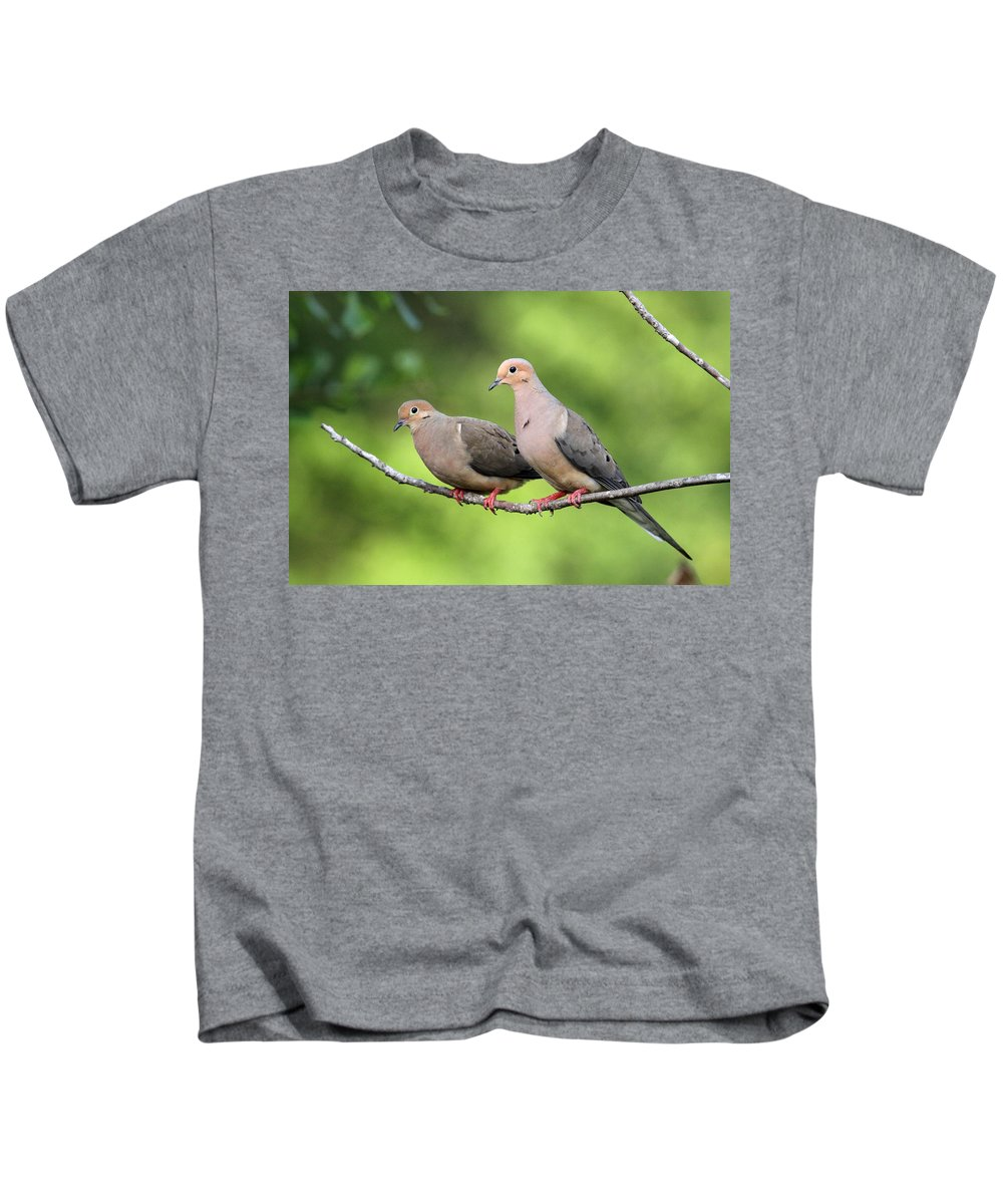 Mourning Dove Kids T-Shirt featuring the photograph Two Doves by Travis Truelove