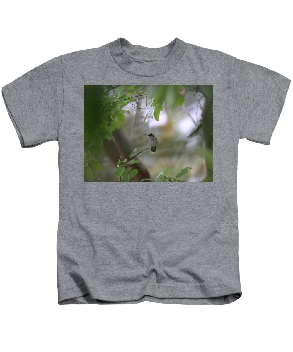 Hummingbird Kids T-Shirt featuring the photograph Under The Canopy by Travis Truelove
