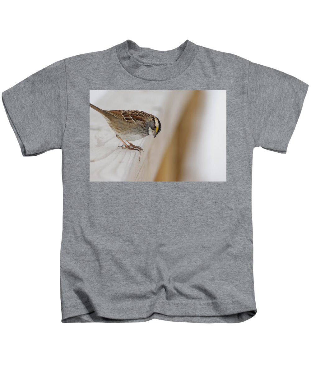 White Kids T-Shirt featuring the photograph White Throated Sparrow by Joe Faherty