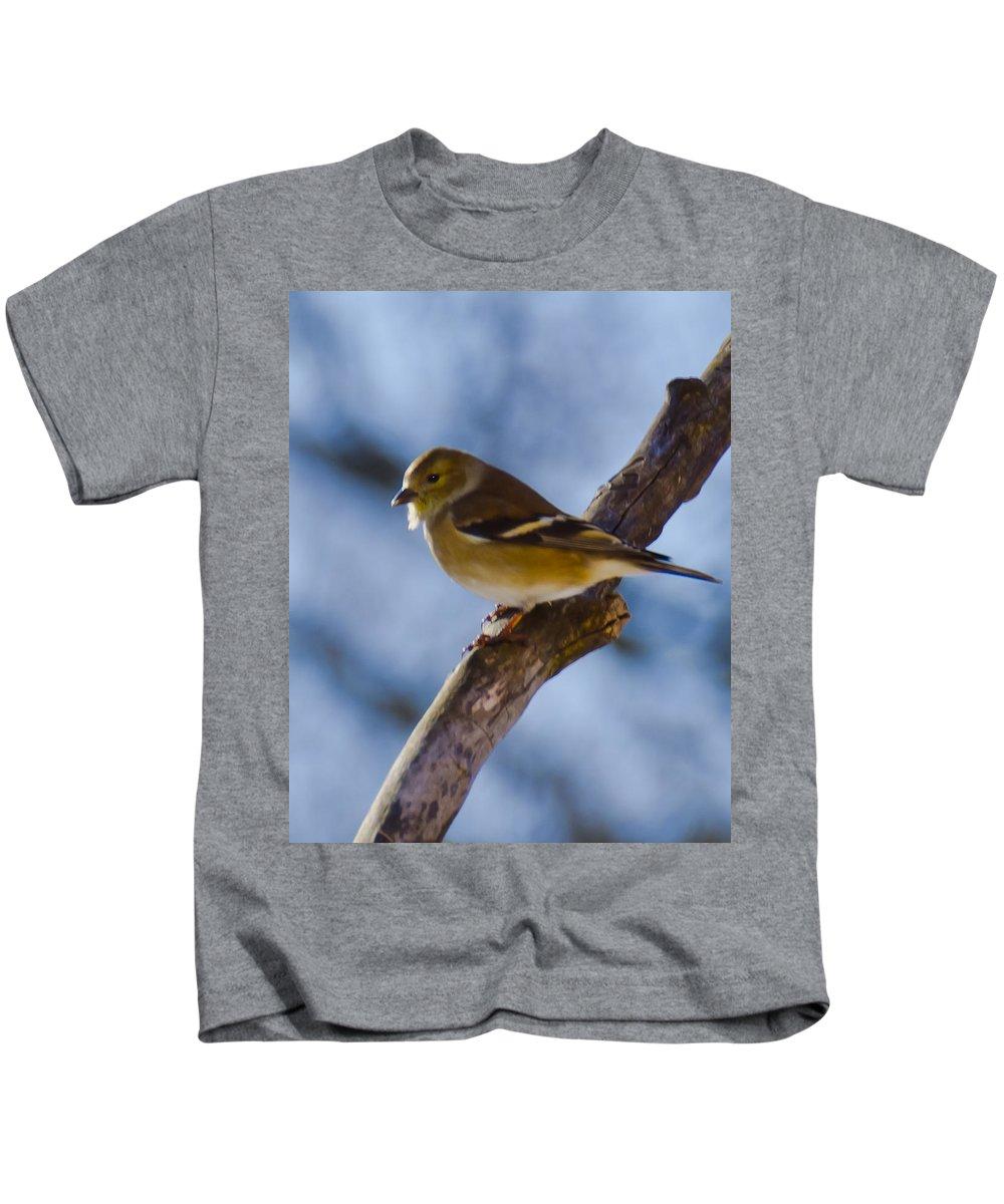 Animals Kids T-Shirt featuring the photograph Winter Bird by LeeAnn McLaneGoetz McLaneGoetzStudioLLCcom