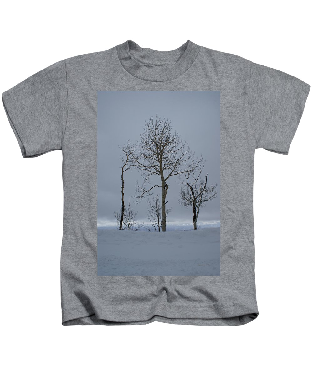 Winter Elegance Kids T-Shirt featuring the photograph Winter Elegance Too by Ernie Echols