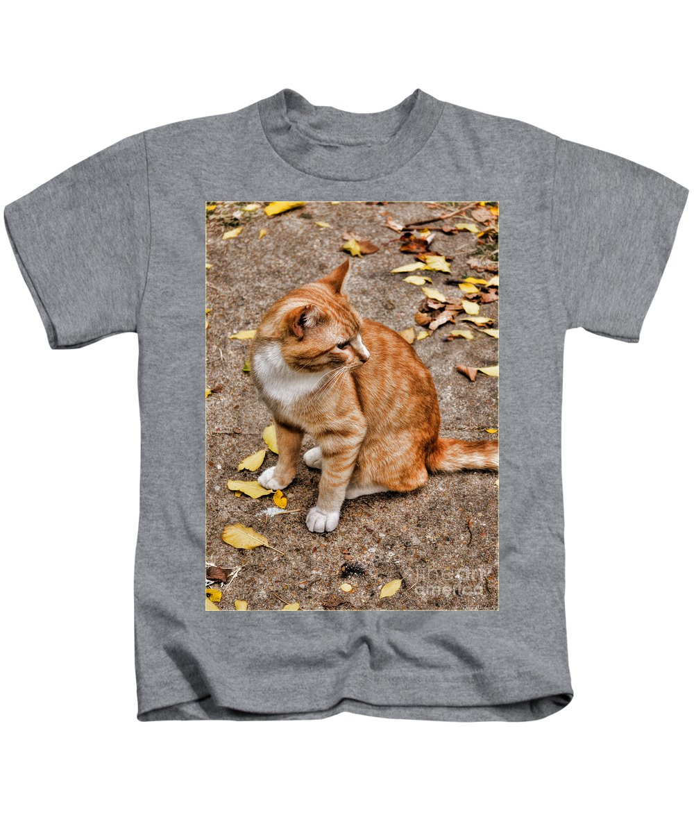 Nature Kids T-Shirt featuring the photograph Yellow Kitty by Debbie Portwood