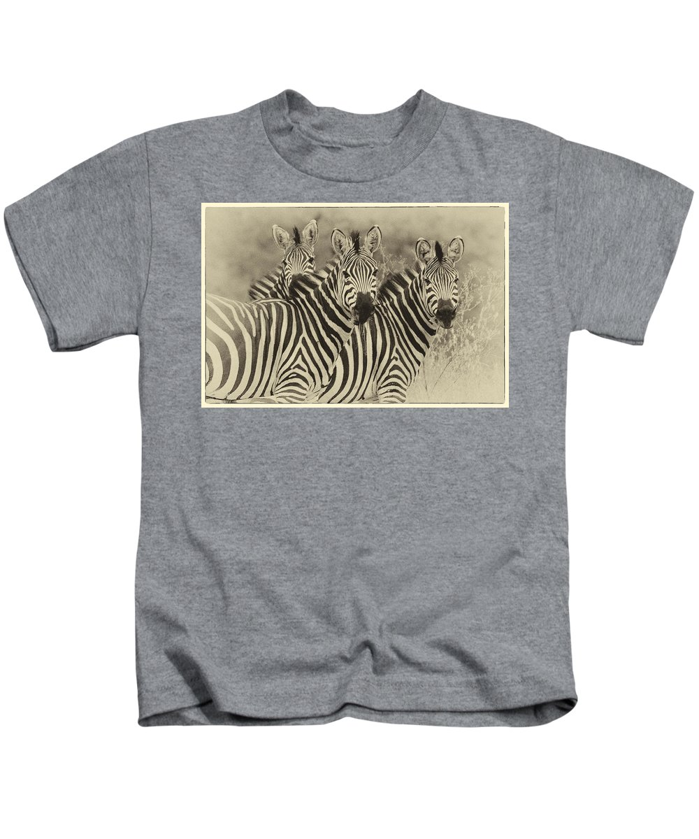 Africa Kids T-Shirt featuring the photograph Zebra Trio by Jack Daulton