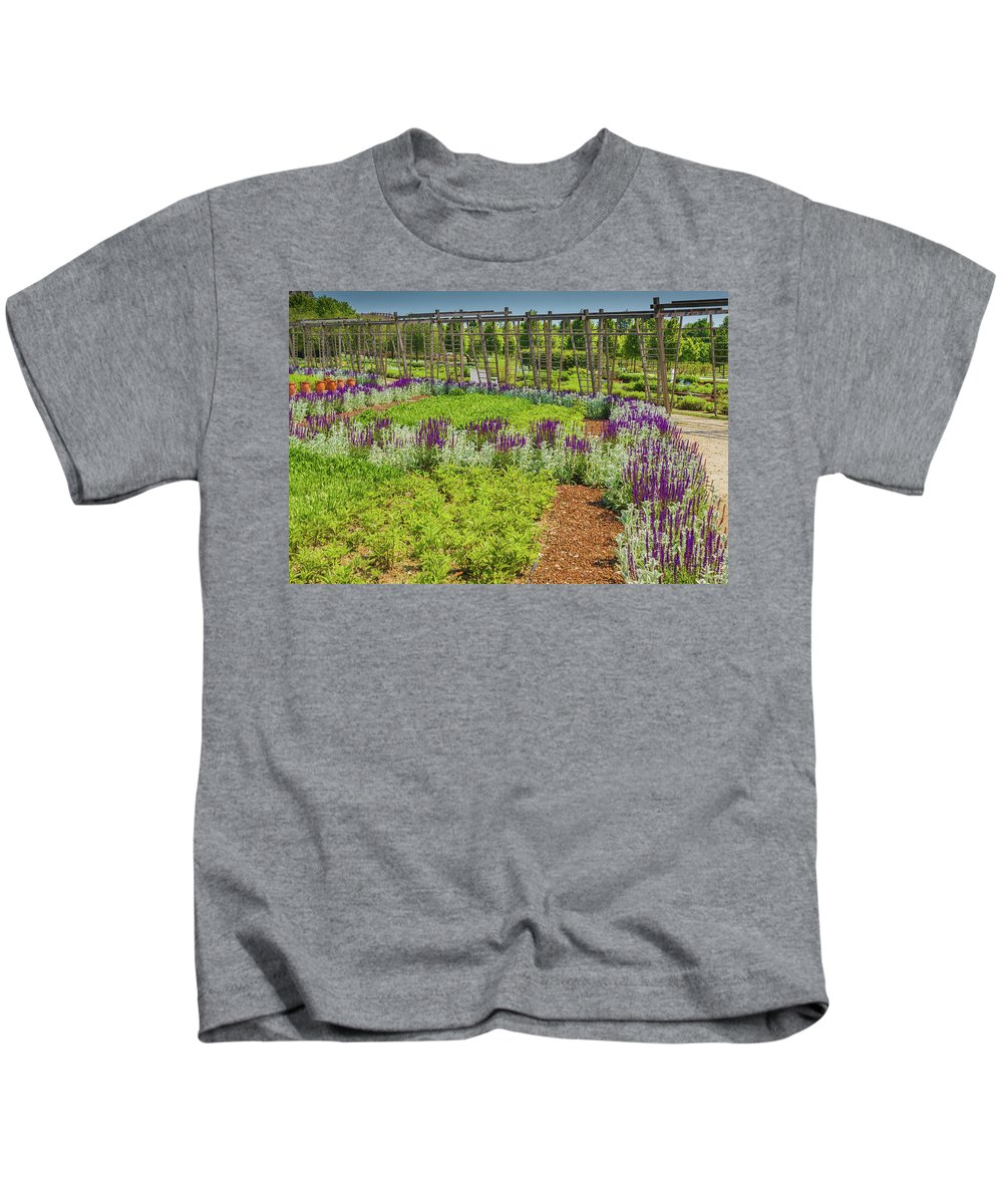 Italy Kids T-Shirt featuring the photograph A Corridor Of Purple Sage Flowers And Stachys Lanata Sunlit by Daniele Mattioda