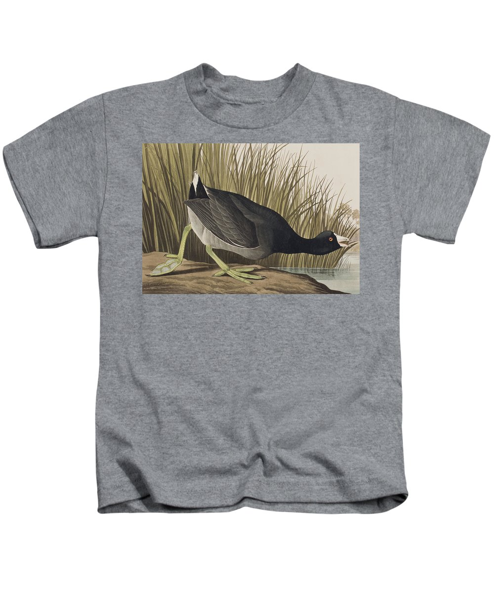 Coot Kids T-Shirt featuring the painting American Coot by John James Audubon