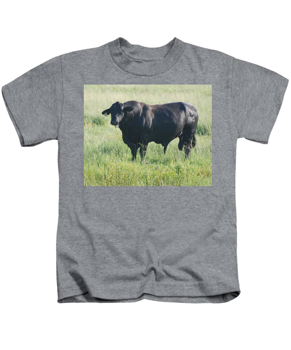 Cow Kids T-Shirt featuring the photograph American Cow by Rob Hans