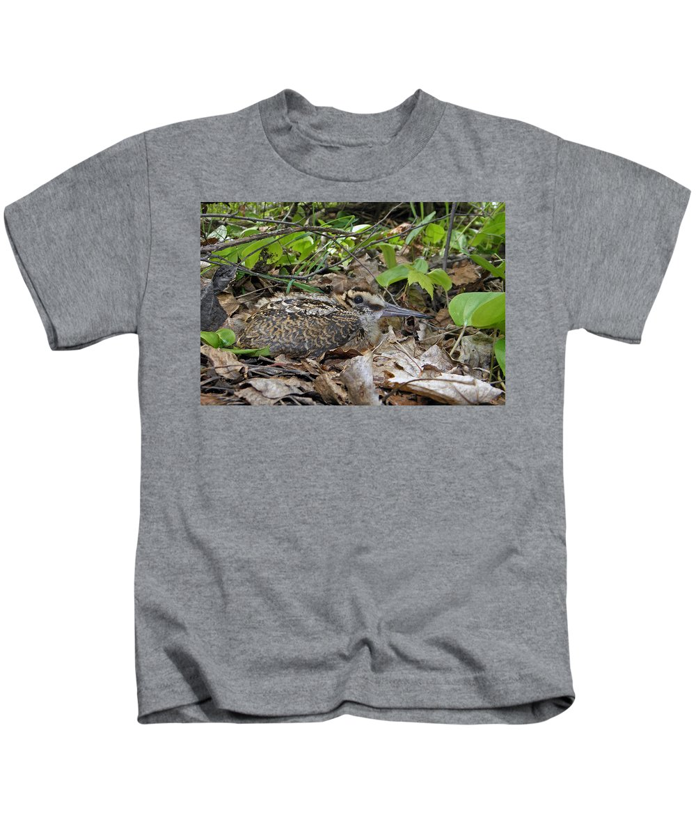 American Woodcock Kids T-Shirt featuring the photograph American Woodcock Chick by Asbed Iskedjian