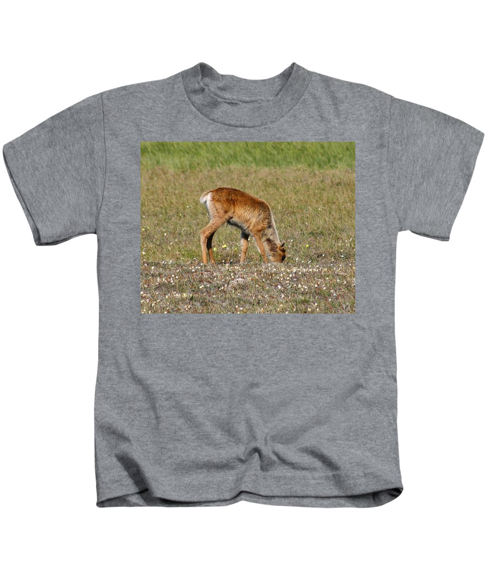 Deer Kids T-Shirt featuring the photograph Caribou Fawn by Anthony Jones