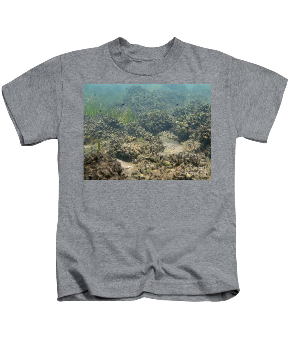 Freshwater Kids T-Shirt featuring the photograph Catfish Fry by Ted Kinsman