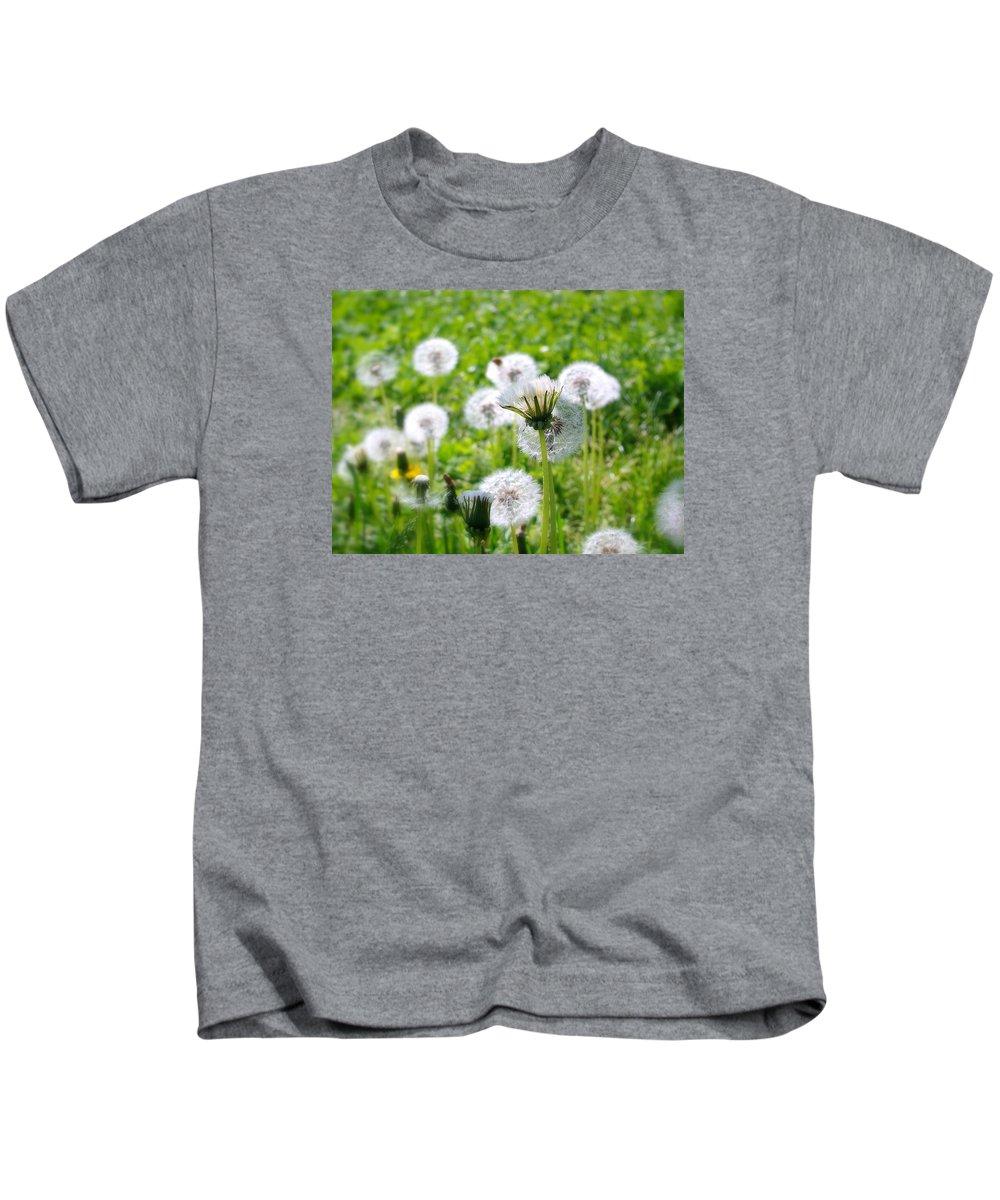 Dandelions Kids T-Shirt featuring the photograph Dandelions by Sergey Sogomonyan