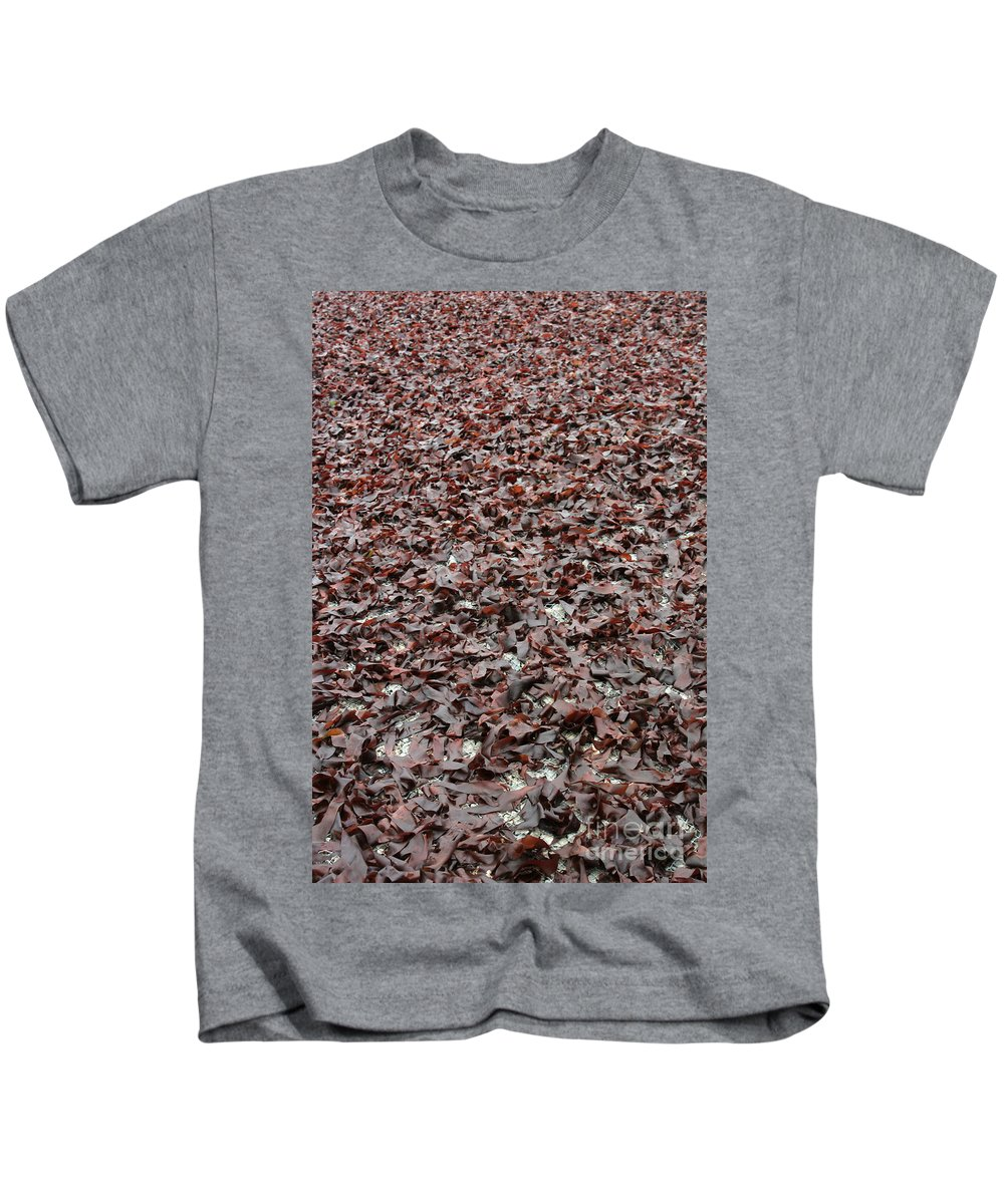 Plant Kids T-Shirt featuring the photograph Drying Dulse by Ted Kinsman