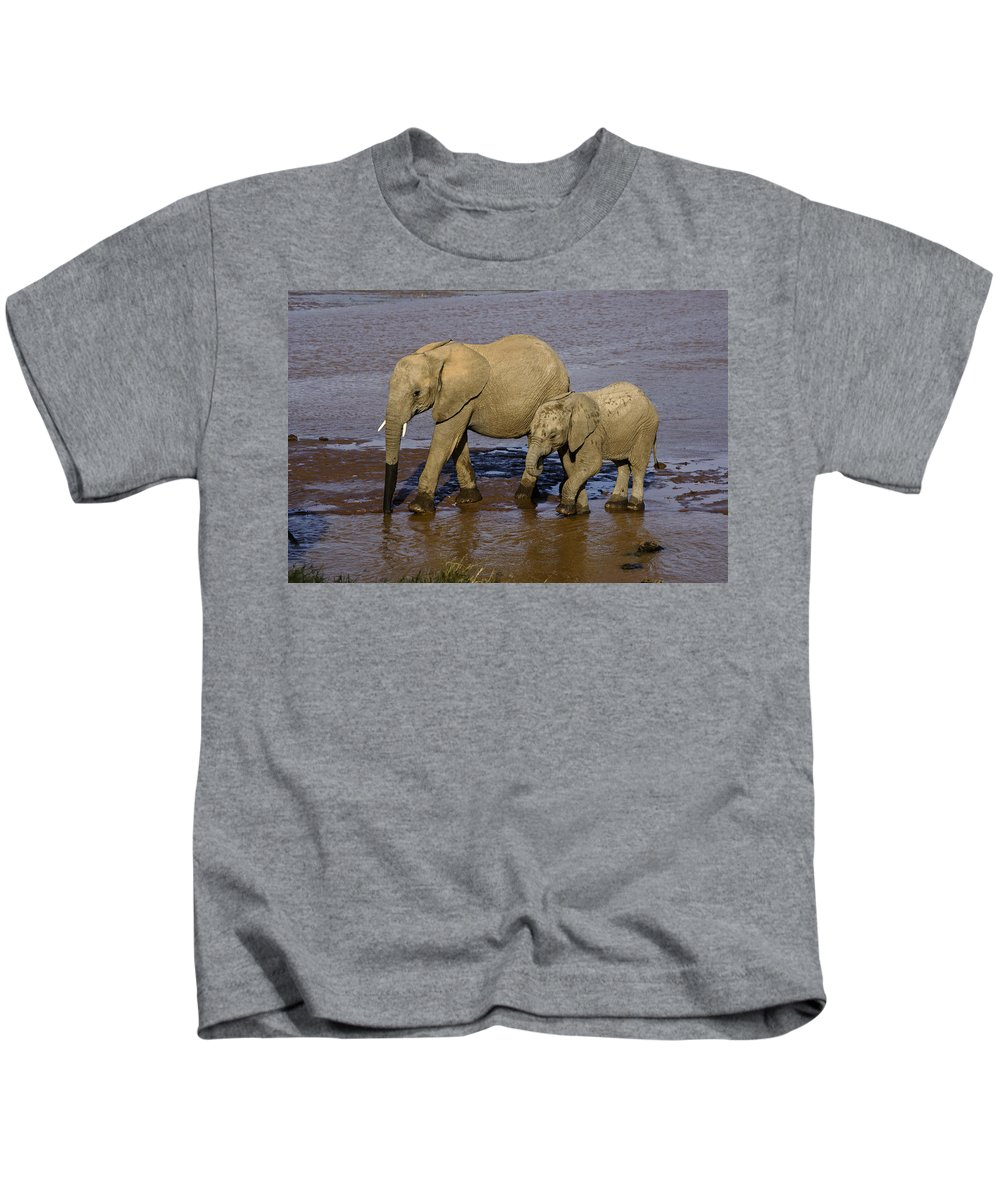 Africa Kids T-Shirt featuring the photograph Elephant Crossing by Michele Burgess
