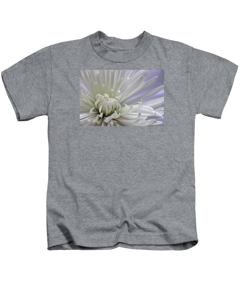Chrysanthemum Kids T-Shirt featuring the photograph Fragile Beauty by Iryna Goodall
