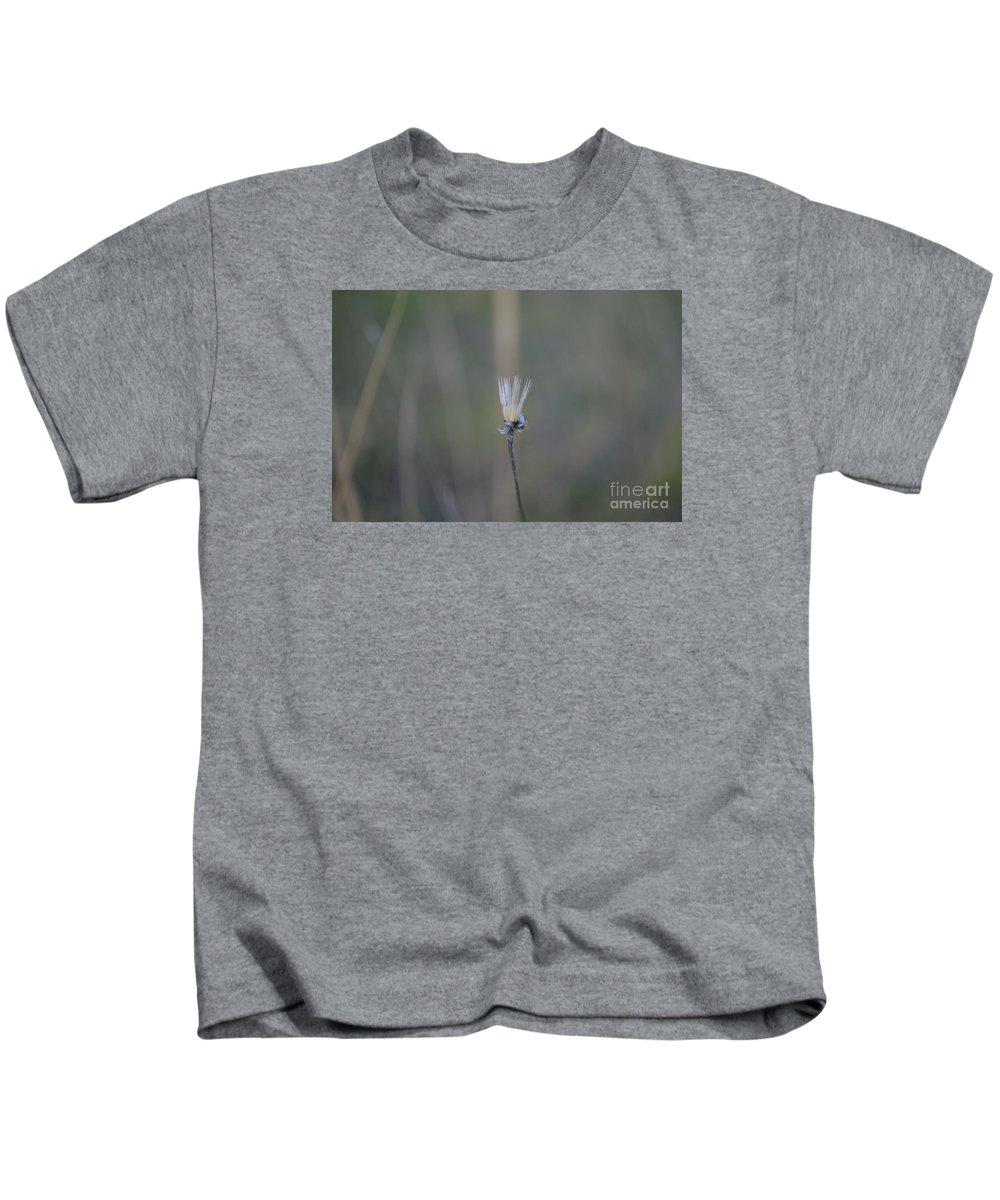 Eva Maria Nova Kids T-Shirt featuring the photograph Graceful Aging by Eva Maria Nova