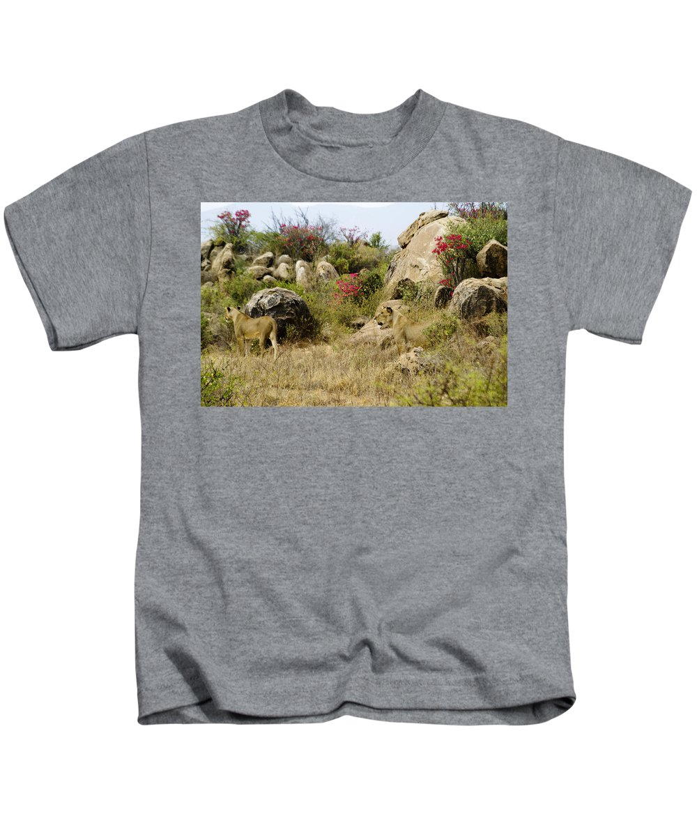 Lion Kids T-Shirt featuring the photograph Hunting Lionesses by Michele Burgess