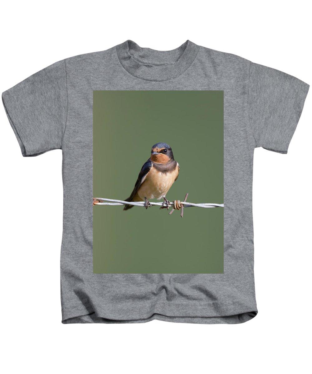 Barn Kids T-Shirt featuring the photograph Juvenile Barn Swallow by Peter Walkden