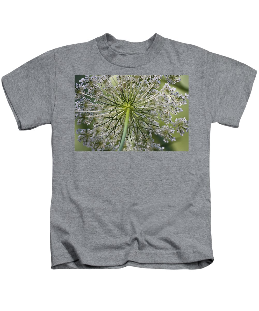 Queen Anne's Lace Kids T-Shirt featuring the photograph Look Up by Teresa Mucha