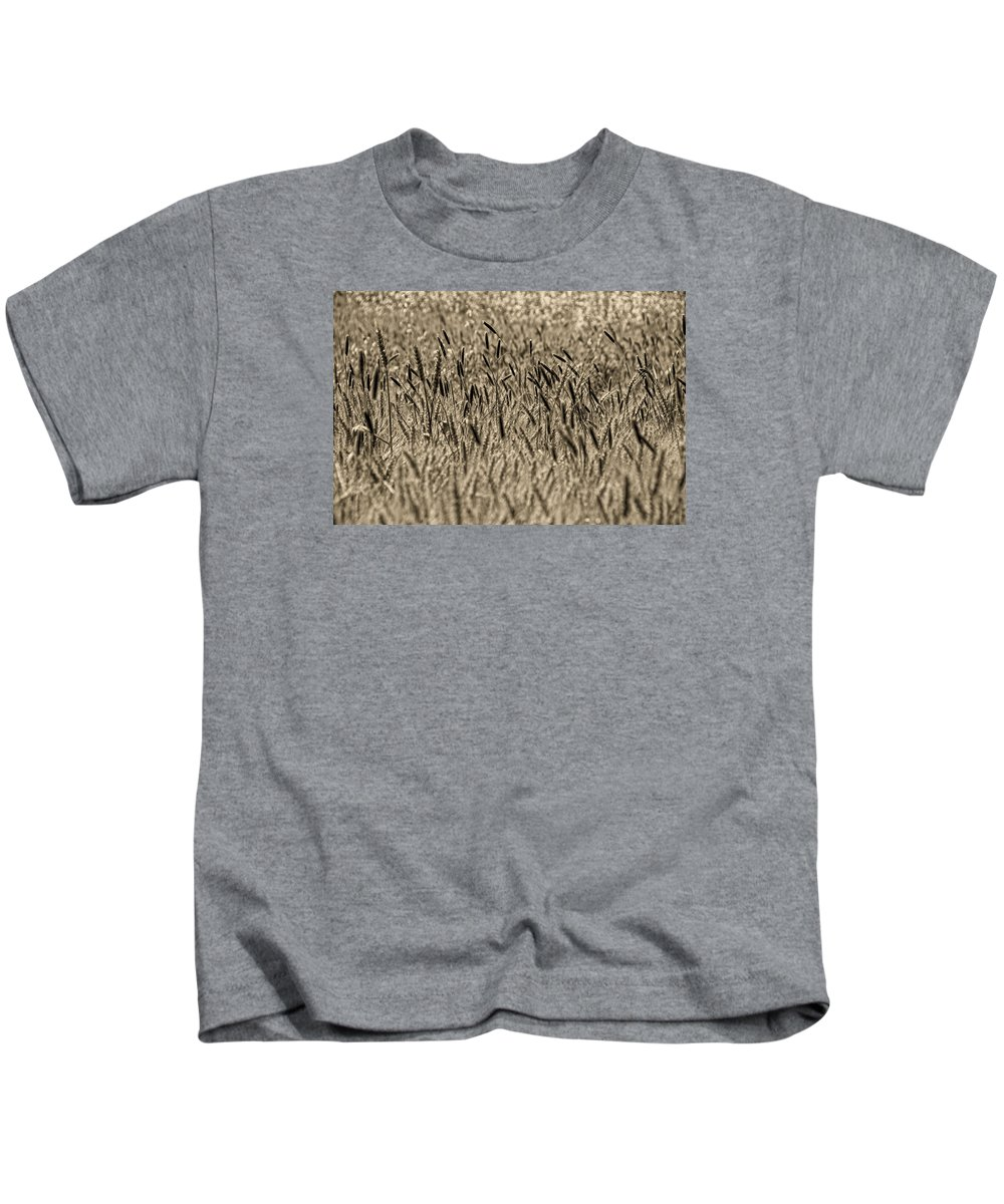Kids T-Shirt featuring the photograph Harvest Time by Deb Cohen