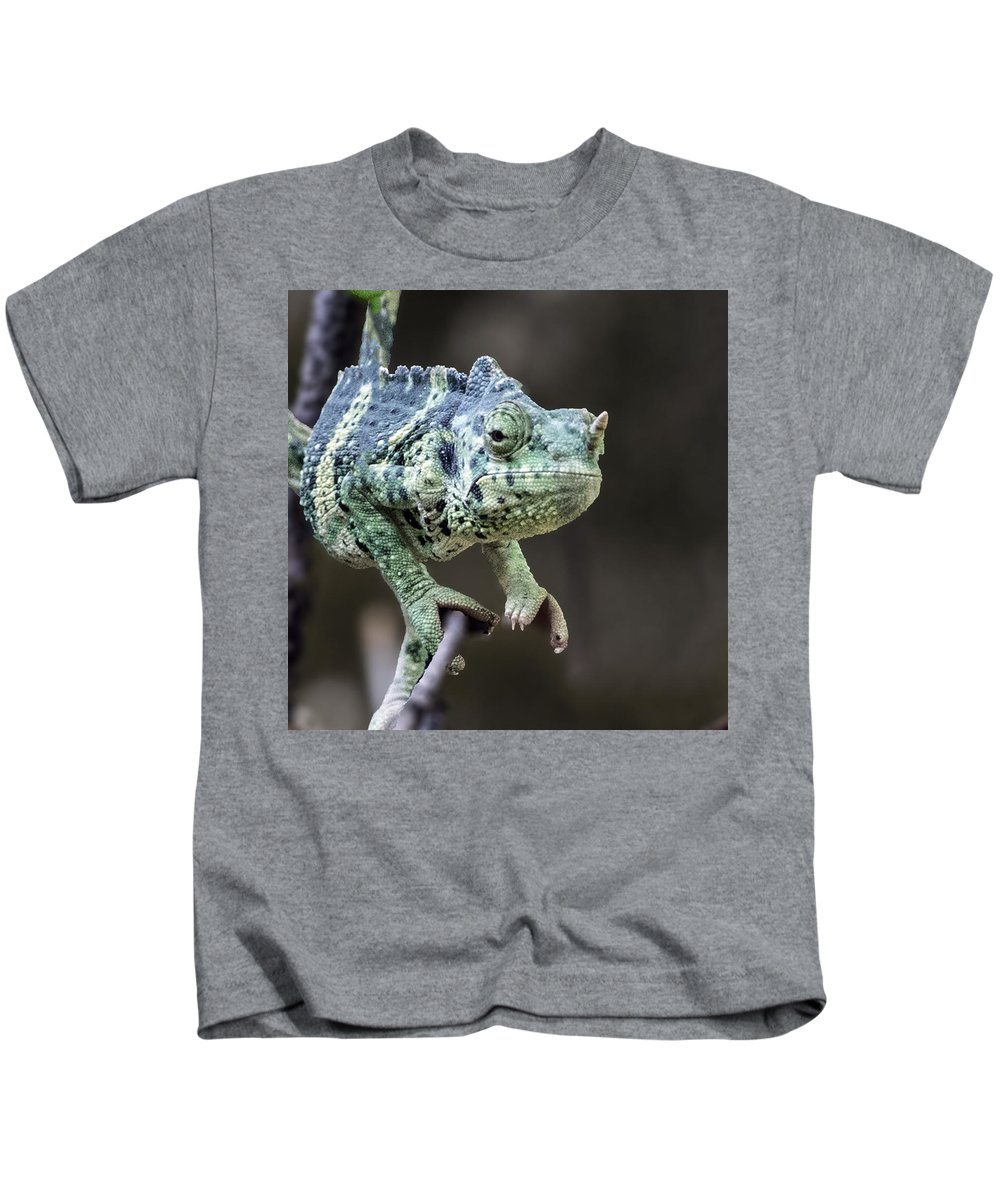 Animal Kids T-Shirt featuring the photograph Mellers Chameleon Portrait by William Bitman