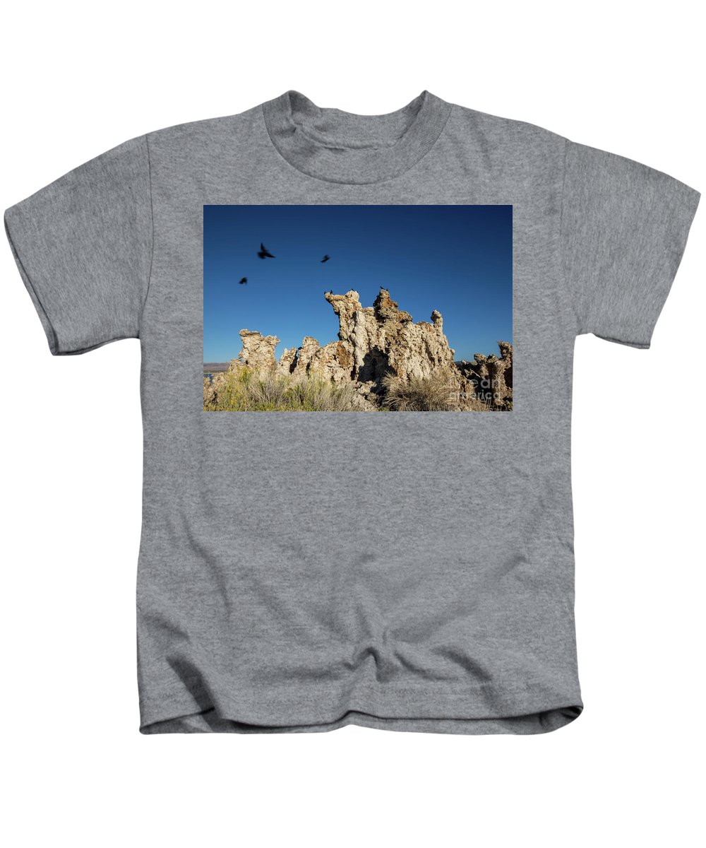395 Kids T-Shirt featuring the photograph Natural Rock Formation And Wild Birds At Mono Lake, Eastern Sier by Eiko Tsuchiya