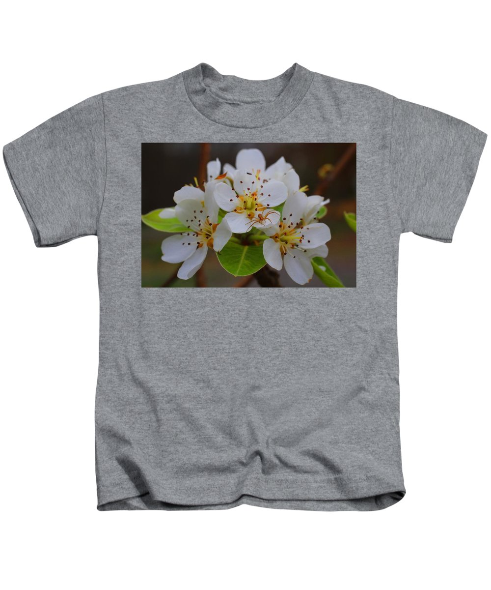 Pear Blossoms Kids T-Shirt featuring the photograph Pear Blossoms by Kathryn Meyer