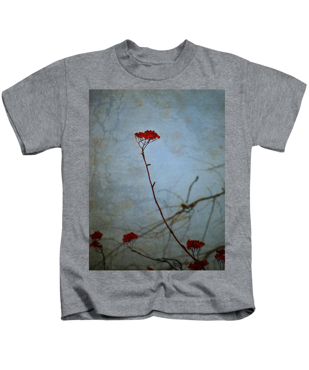 Blue Kids T-Shirt featuring the photograph Red Berries Blue Sky by Tara Turner