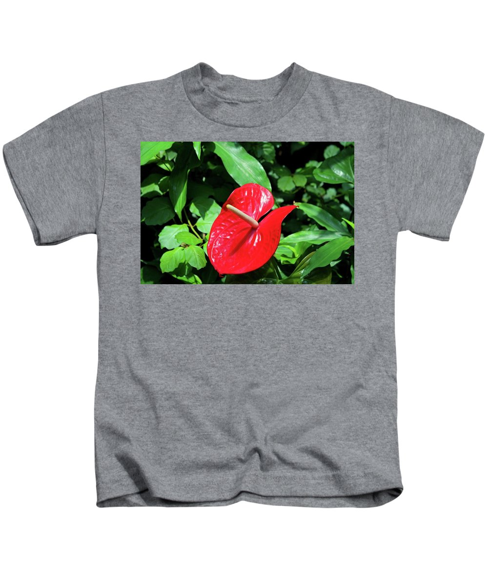 Flamingo Flower Kids T-Shirt featuring the photograph Red Flamingo Flower II by Michiale Schneider