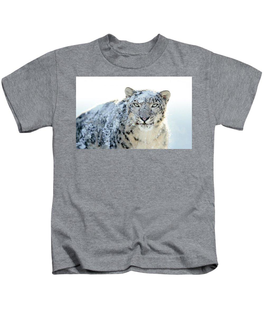 Snow Leopard Kids T-Shirt featuring the digital art Snow Leopard by Dorothy Binder