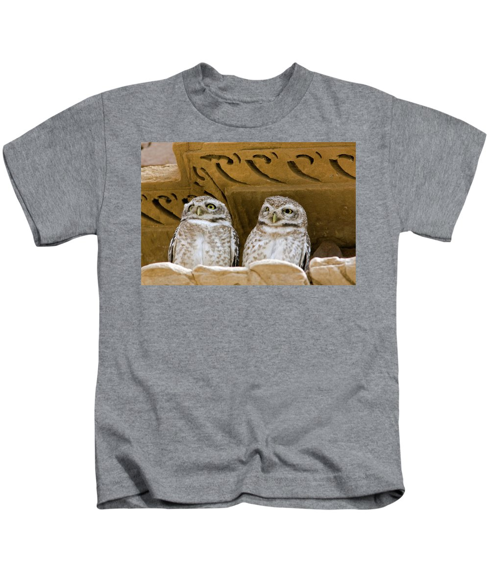Spotted Owlet Kids T-Shirt featuring the photograph Spotted Owlets by Aivar Mikko