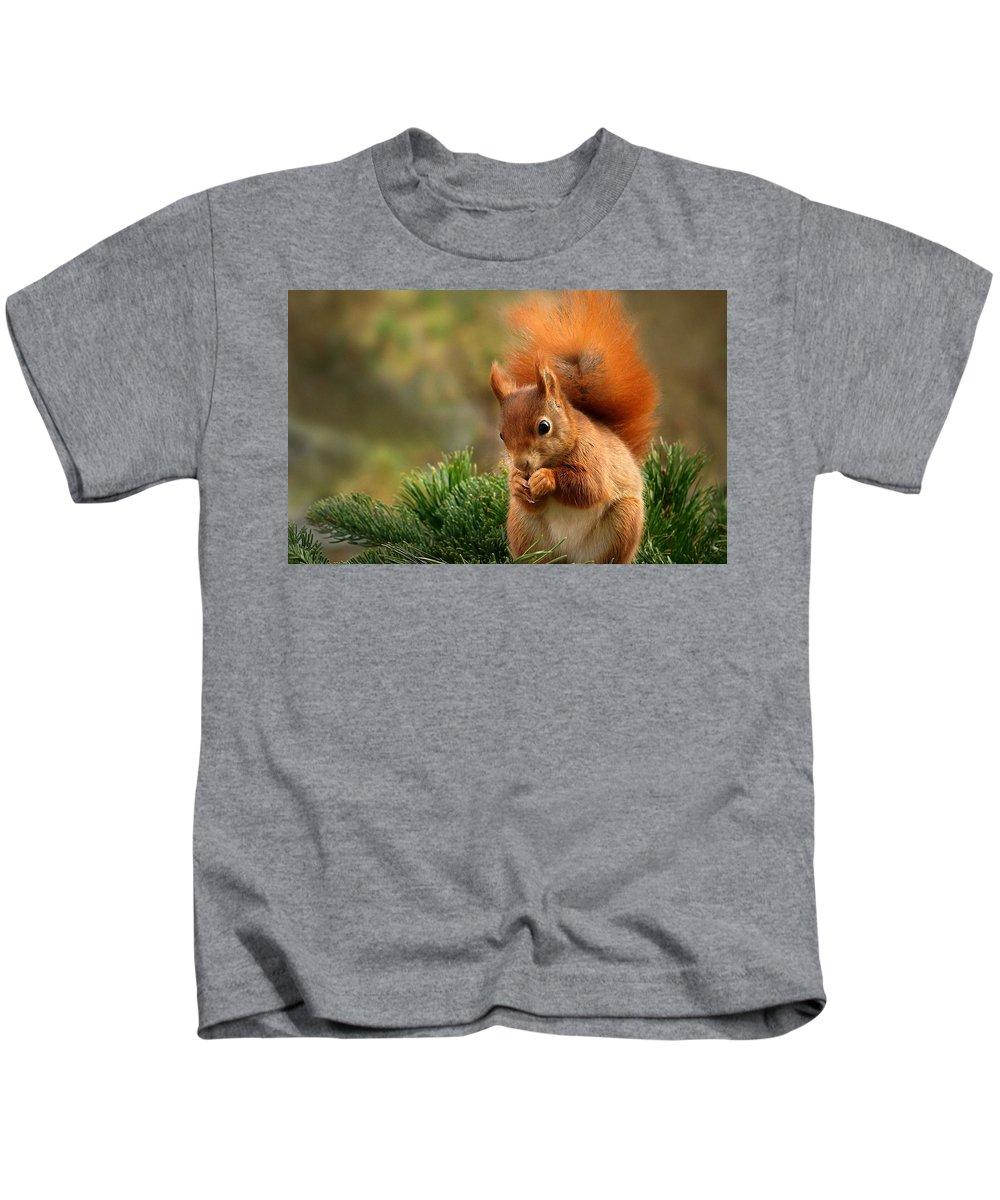 Squirrel Kids T-Shirt featuring the digital art Squirrel by Dorothy Binder