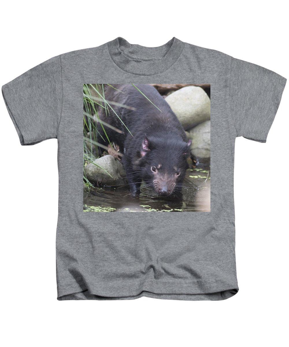 Tasmania Kids T-Shirt featuring the photograph Tasmanian Devil by Masami Iida