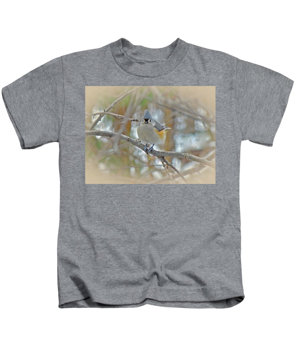 Titmouse Kids T-Shirt featuring the photograph Tufted Titmouse - Baeolophus Bicolor by Mother Nature