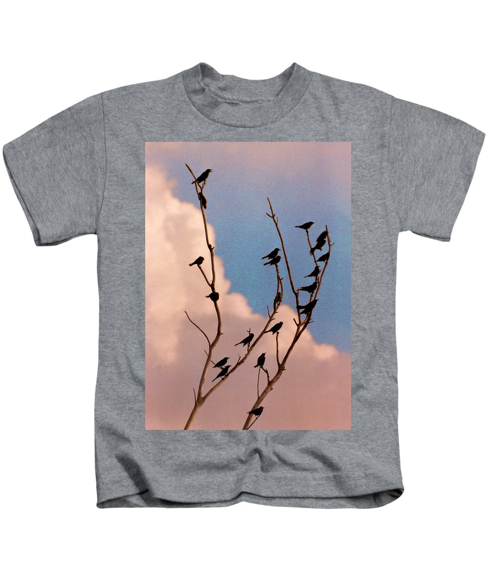 Birds Kids T-Shirt featuring the photograph 19 Blackbirds by Steve Karol