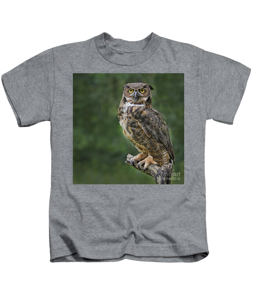 Great Horned Owl Great Horned Owl Great Horned Owl Great Horned Owl Kids T-Shirt featuring the photograph Great Horned Owl by Sherry Butts